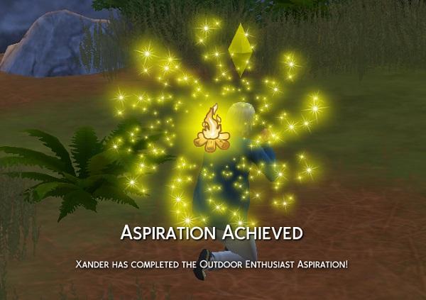 002aspiration7